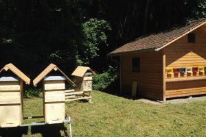Bienen Dorf von Bee-Family